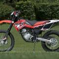 Beta 125 RR 2011